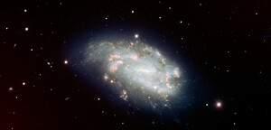 NGC 1559