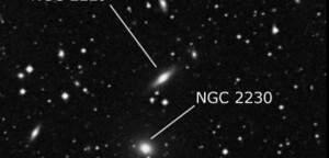 NGC 2229