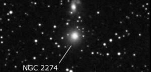 NGC 2274