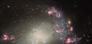 NGC 428