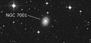 NGC 7001
